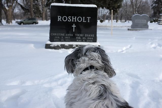 Remembering Christine Rosholt
